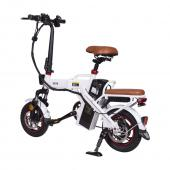 Electric Bike FLXJ-3001
