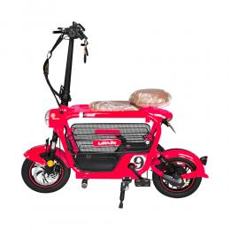Adults Electric Bike For Sale FLXP-1001