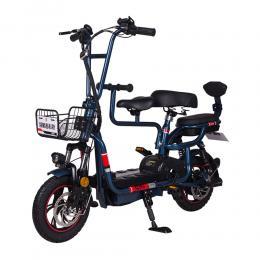 Electric Bike FLMF-4001