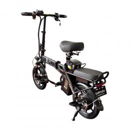 Electric Bike FLJL-5001