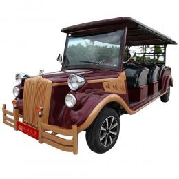 Electric Sightseeing Tourism Car